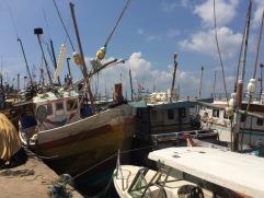 Fishing boats in Mirissa
