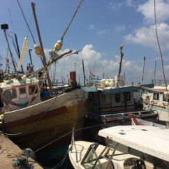 Fishing boats in Mirissa